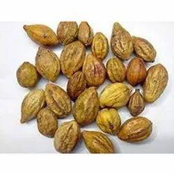 Terminalia Chebula Seed