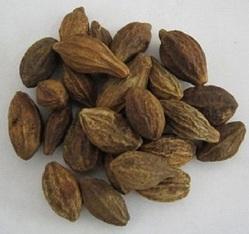 Harad Fruit
