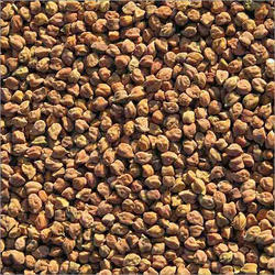 Brown Chana Seed, No Artificial Flavour