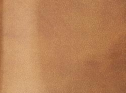 Upholstery Fabrics DIVINE HYDRA