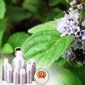 L-Menthol 38-40% TMC 50% Oil