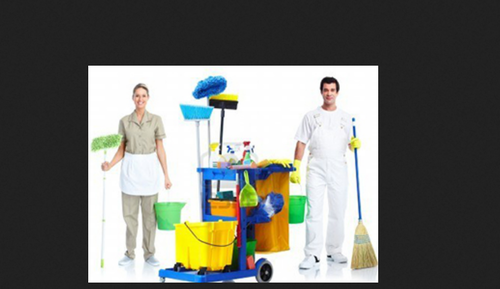 Housing Keeping Services, House Keeping, House Cleaning Service, ??????????  ?????? in Korattur, Chennai , Delhi Ganesh | ID: 18519289173