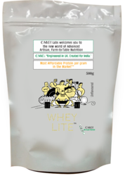 OMG Whey Lite Concentrate, Packaging Type: Pouch