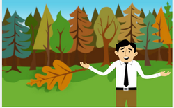 Ticketmanager Animated Video  If A Tree Falls