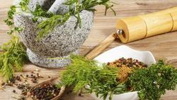 Ayurvedic PCD Pharma Franchise In Bhopal