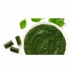 Spinach Puree Paste