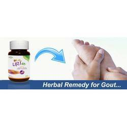 Herbal Remedy for Gout