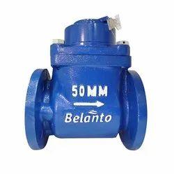 Woltman Type Class B Water Meter