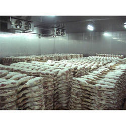 Fish Cold Storage Room