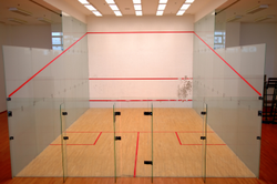 Wooden Squash Court Development Service