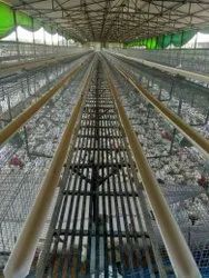 Layer Egg Poultry Cage