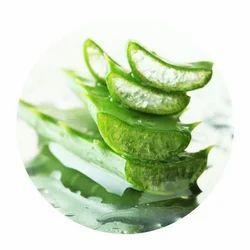 Gentle Aloe Water Soluble Fragrance
