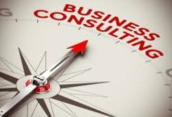 Business Excellence Consultant