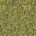 Indian Green Millet, Gluten Free