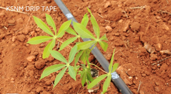 Agriculture Drip Sprinkler System