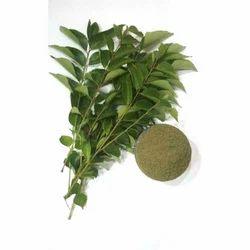 Organic Curry Leaf Powder, 2-3 Tons