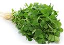 Kasori Methi Leaves