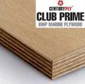 Centuryply Club Prime Plywood