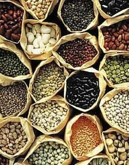 Native Organic Vegetable Seed