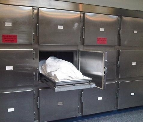 Dead Body Cold Storage View Specifications Amp Details Of