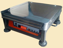Mobile Platform Weighing Scale