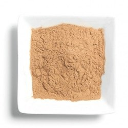 Shitake Mushroom Extracts