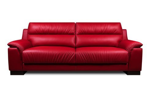 Fancy Red 2 Seater Sofa Aset
