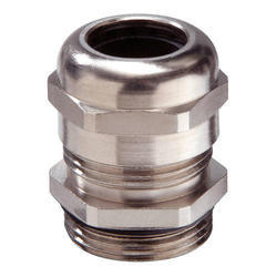 S.S.(Stainless) Cable Gland