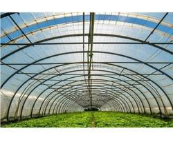 Greenhouse Protection Film
