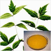 Neem Cold Press Oil , Packaging Size: 5 Litre
