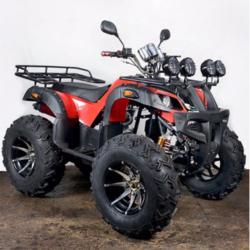 ATV Quad Bike at Rs 250000 /piece | ATV Quad Bike