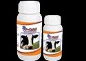 Cattle Herbal Immunity Enhancer Supplement (P-Cold)