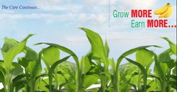 Agro Division