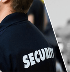 Risk Assessment Security Guard Services