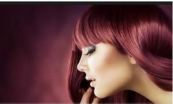 Hair Colour and Highlighting Services