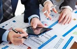 Consulting Firm Retainer Based Chartered Accountant Audit Services For Bank