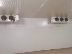 Bulk Cold Storage Room