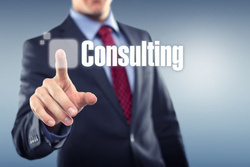 Security Consulting Service