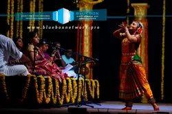 Offline Cultural Event Organizers