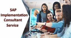 SAP Consultants