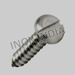 Ss 304 Pan Slotted Self Tapping Screws