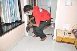 Yearly Commercial Anti Termite Control Services, Mumbai