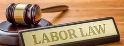 Labour Law Consultant