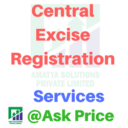 Central Excise Services