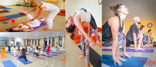 Male And Female 200 Hours Vinyasa Yoga Teacher Training Course Rs 1600 Person Id 15089979630