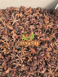 14049090 Star Aniseed, Clove, Packaging: Box
