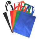 Loop Handle Plain PP Bag