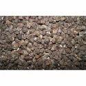 Natural Wingless Moringa Seeds, For Medicine, Packaging Size: 1kg