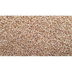White Brown Kanishka Sesame Seeds (Till), Packaging Size: 50Kg, Packaging Type: PP Bag