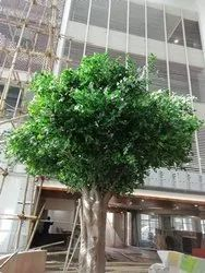 Artificial Ficus Tree